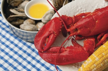 Maine-lobster-on-the-plate
